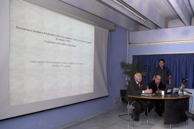 Pérez de Gregorio, Fernández i Rondós. Foto: J. Vidal