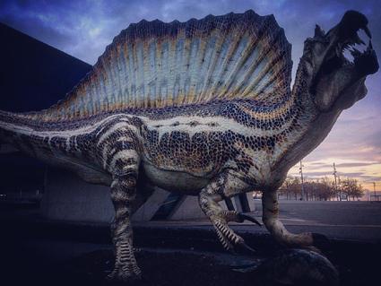 Spinosaurus. Imatge de Jordi Serrallonga